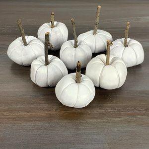 10 Tiny Miniature White Decorative Pumpkins